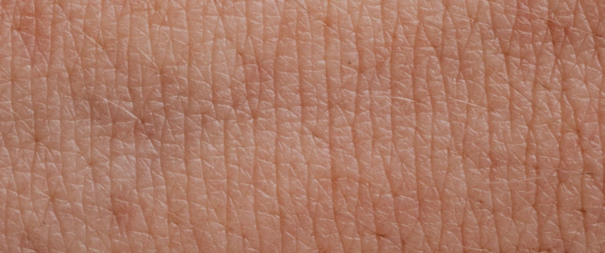 Electronic Artificial Skin Reacts to Pain